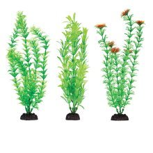 "Plastic Aquarium Plants 12"" Penn Plax, Pack Of 6 Green Assorted"
