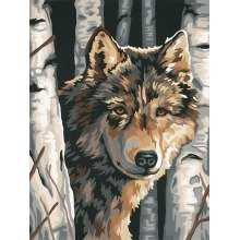 Dpw91325 - Paintsworks Learn to Paint - Wolf Among Birches
