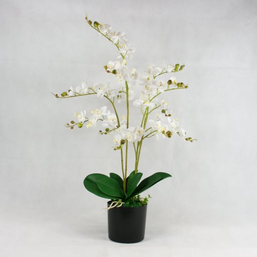 Wild Phalaenopsis Orchid Silk Artificial Potted Plants Home & Office