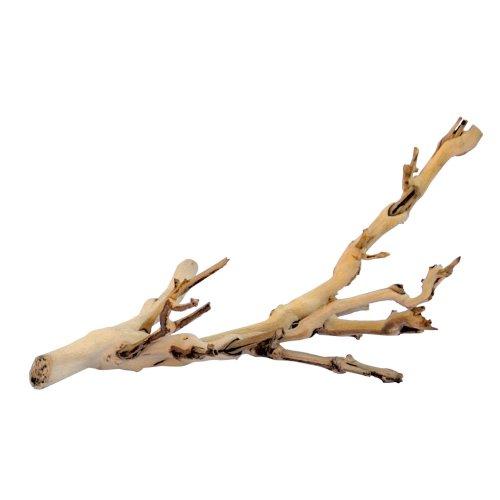 Exo Terra Forest Branch Medium