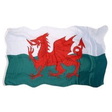 Welsh Wales Fabric Flag National Souvenir Gift Cymru Red Dragon 5ft x 3ft Football Rugby Team St Davids Day