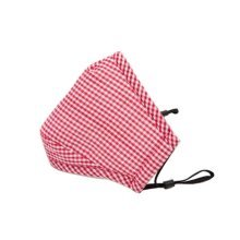 PM2.5 Adults's Mask For Anti-smog Of N95 Activated Carbon (Red Checks)