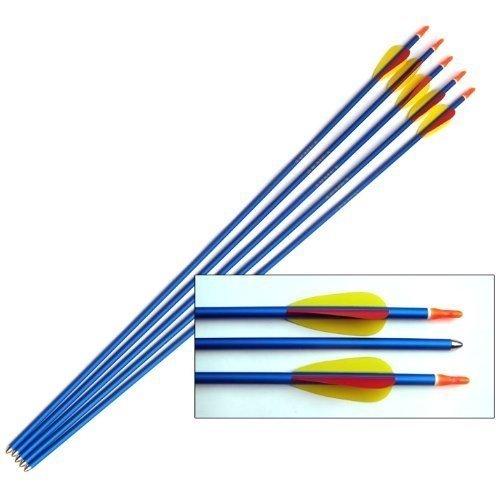 """Blue Aluminium Target Arrows - 30"""" Long - set of 5"""
