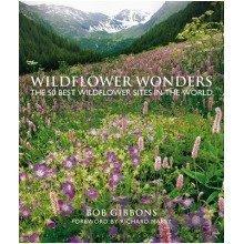 Wildflower Wonders