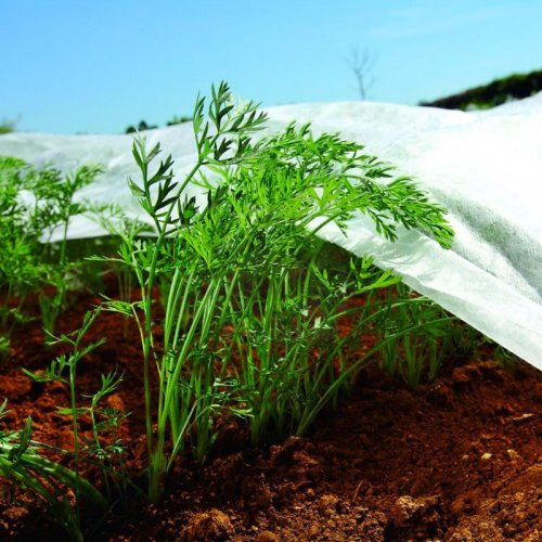 Nonwoven Crop & Plant Cover - Frost Protection - Insect Netting - 3.2m X 5m