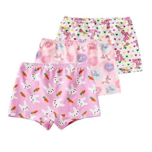 Pretty Summer/Autumn Girls Underwear/Briefs Pack of 3
