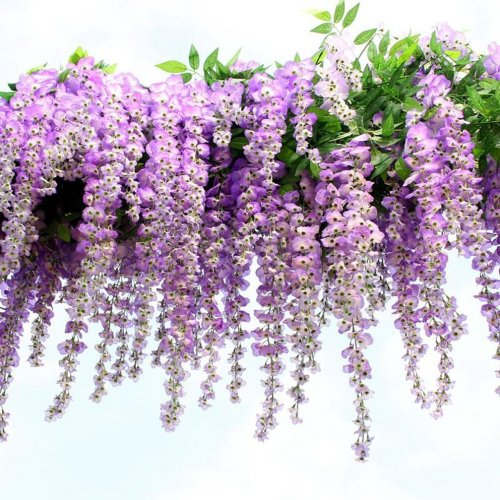 Houda Artificial Wisteria Vine Ratta Hanging Garland Silk Flowers for Party Home Wedding Decor,12PCS, 3.4-Feet, (Purple)
