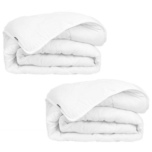 vidaXL Winter All Seasons Duvet/Quilt 2 pcs 155x220 cm White