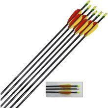 Archery Target Arrows Fibreglass 28 Inch (pack of 12)