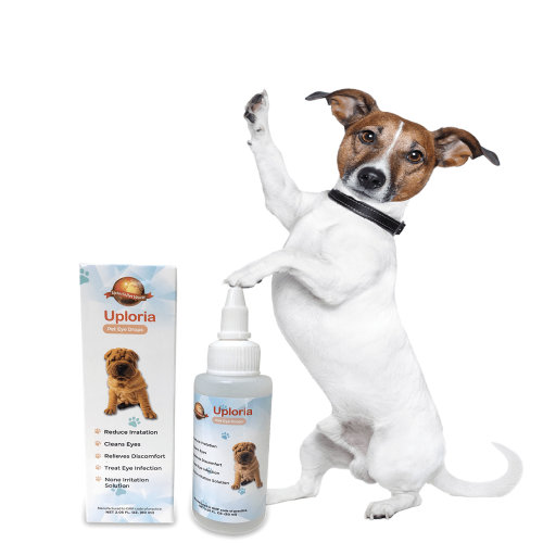 Eye Drops For Dogs For Flushing And Cleaning Irritations To Eyes.