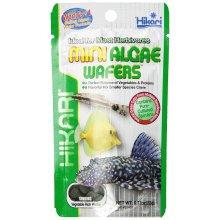 Hikari Mini Algae Wafers 22g