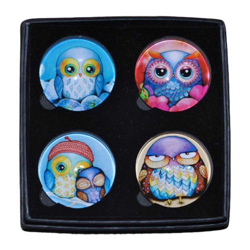 4 Pieces Owl Pattern Glass Refrigerator Magnets Crystal Kitchen Magnets
