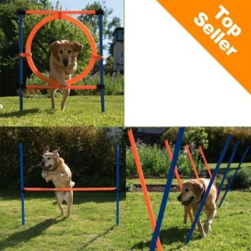 Complete Dog Agility Course Three Dog Agility Exercise Units