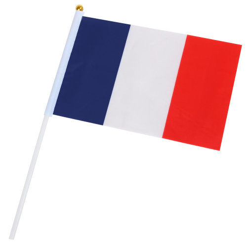 TRIXES 10x Handheld French Flags