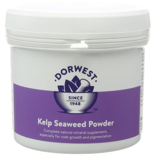 DORWEST HERBS Kelp Seaweed Powder for Dogs and Cats 500g