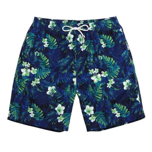 Hot Spring Beach Pants Men's Quick-drying Slacks Holiday Swimsuit,L Size,A5