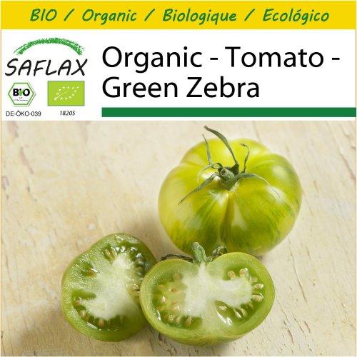 SAFLAX Potting Set - Organic - Tomato - Green Zebra - 10 certified organic seeds  - Solanum